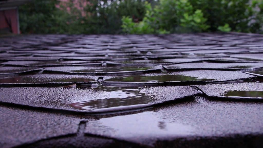 Asphalt Shingles In The Rain 2