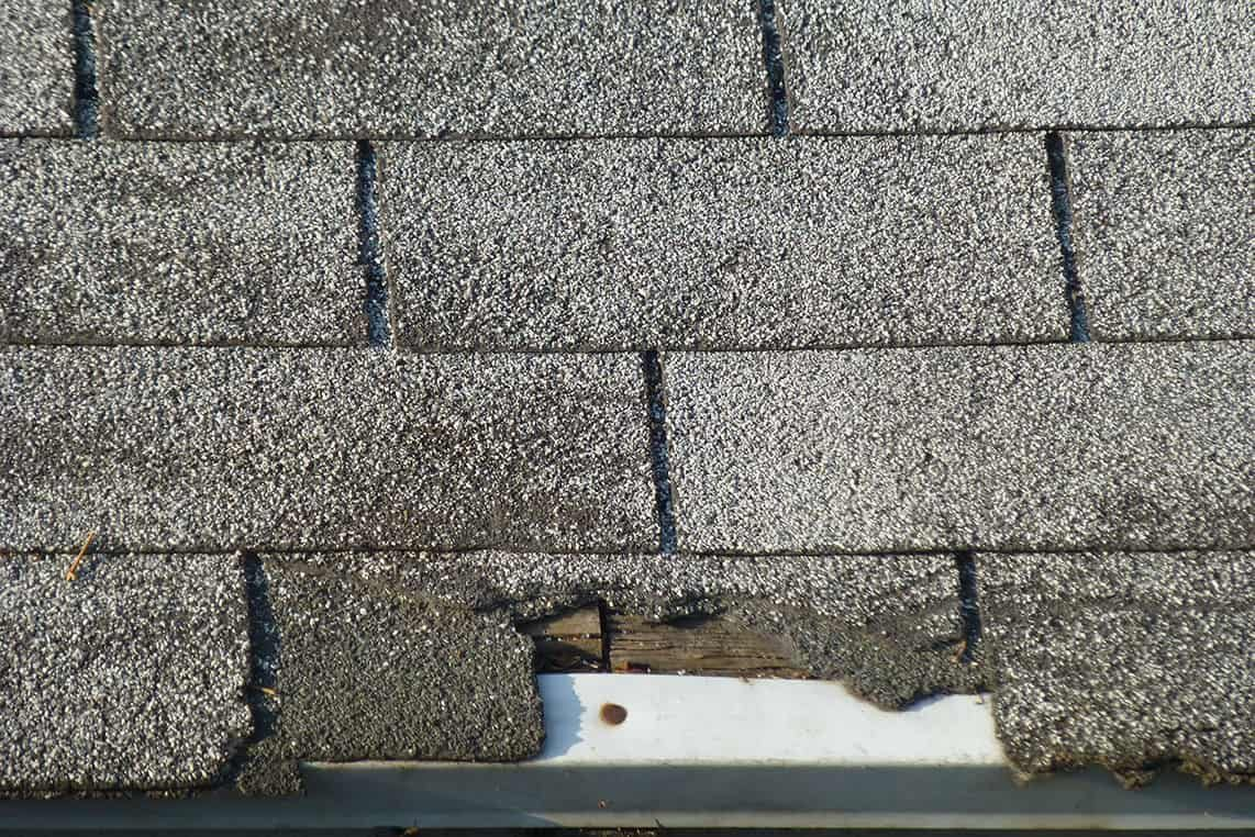 Old Shingle Roof